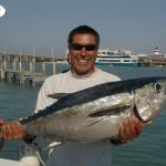 Eddystone eels catch10