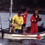 Eddystone eels catch13