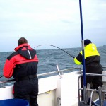 sea-boat-fishing-02