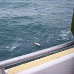 sea-boat-fishing-06