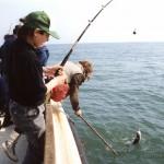 sea-boat-fishing-49