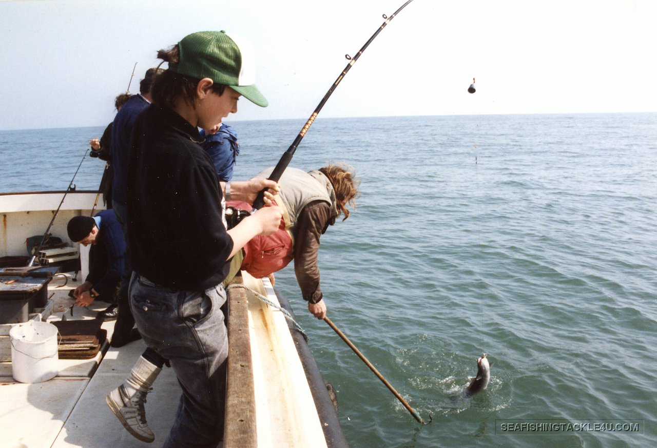 Sea fishing gallery sea fishing tackle and lure fishing for Sea fishing rods
