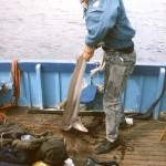 sea-boat-fishing-52