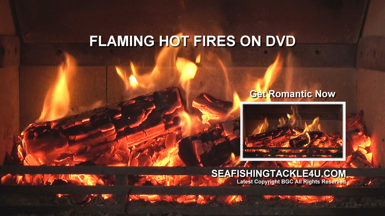 dvd of fireplace burning 28 images dvd fireplace tv jukebox