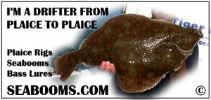 Plaice fishing tacklebox sticker
