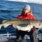 Cod fishing in Norway