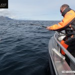 Halibut fishing in Lofoten Islands Norway