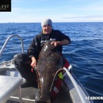 Halibut caught in the Lofoten Islands Norway