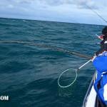wild-frontier-charter-boat-004