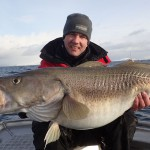 Norway large Cod