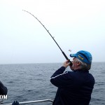 Weymouth Cod fishing 003