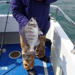 Wild Frontier II Bream fishing 008